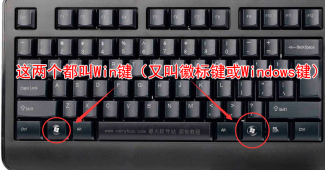 Win键是键盘上哪个键?