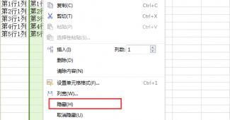 在Excel中隐藏行和列的步骤